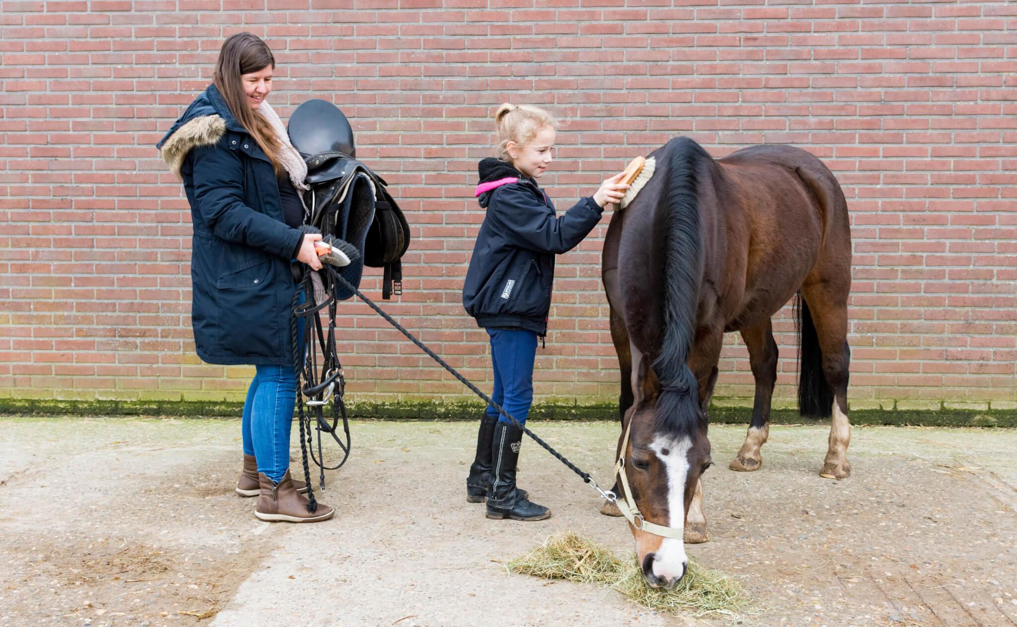 Cursus 'Help, mijn kind rijdt paard'