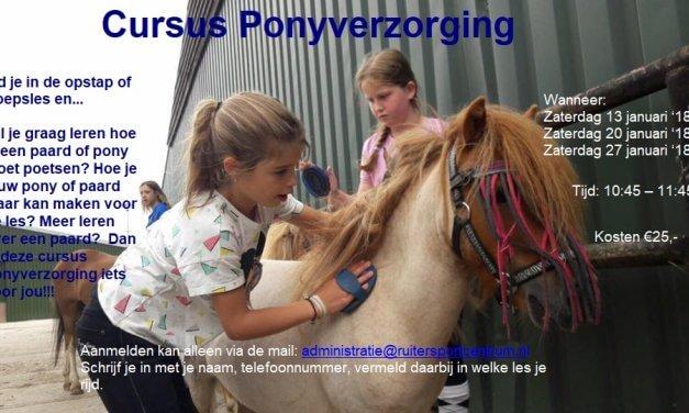 Cursus Ponyverzorging
