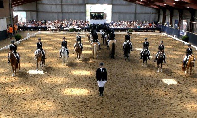 Zondag 3 juni Eredivisie Carrousel Pony's